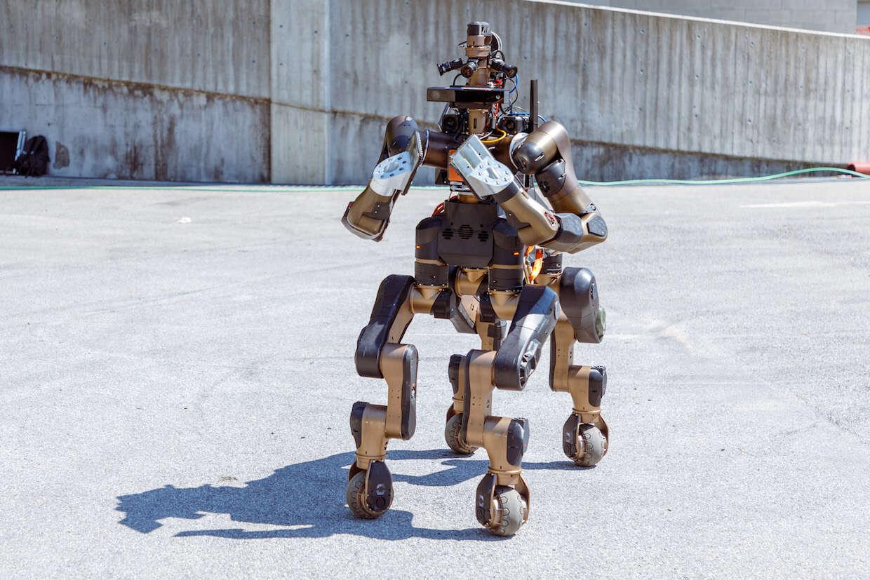Czym zajmuje się Centauro, robot o wyglądzie konia?