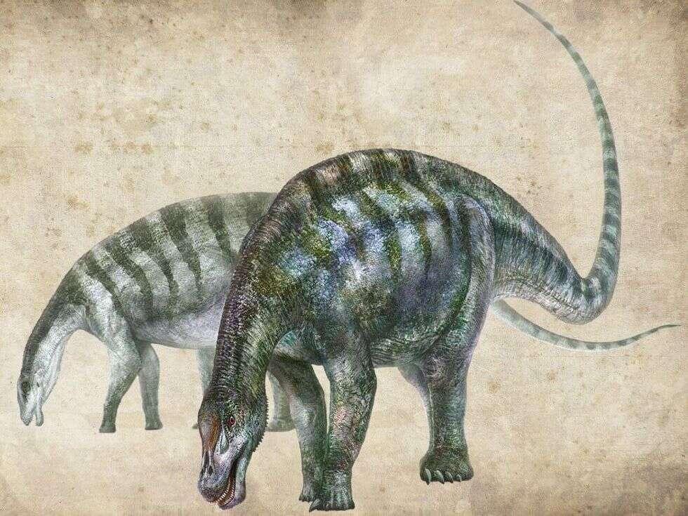 Nowo odkryty dinozaur zmienia wszystko, co do tej pory wiedzieliśmy o jego gatunku