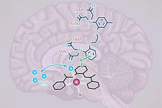 Nowa technika pozwala dokonywać pomiarów głęboko w mózgu