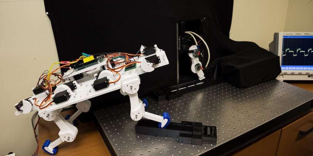 Naukowcy stworzyli robotyczną nogę uczącą się chodzić