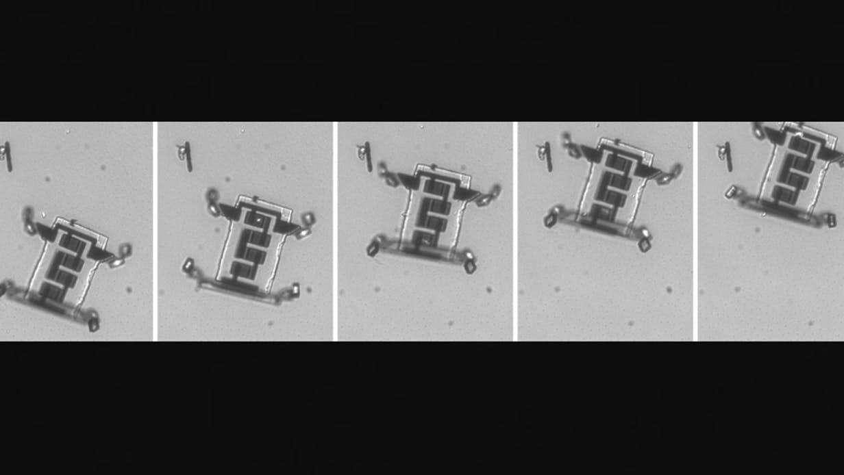 robot, mały robot, robot ciało, robot chodzący w ciele, nano-robot,