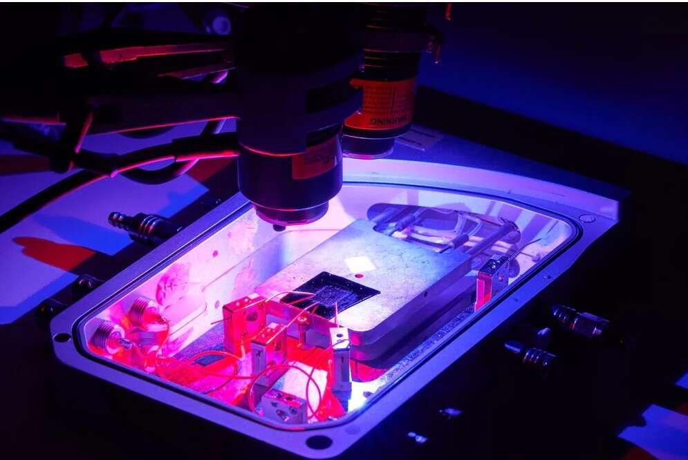 Naukowcy stworzyli optogenetyczny układ imitujący mózg