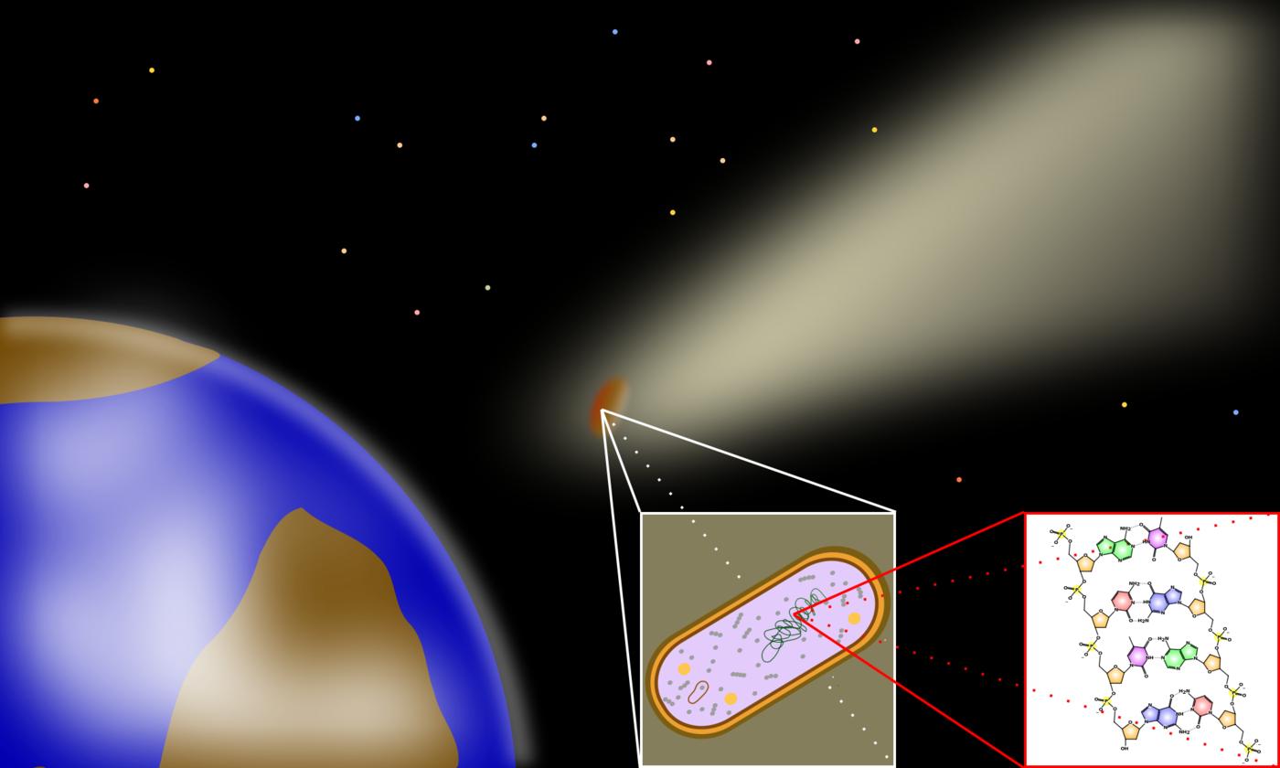 Asteroidy prawdopodobnie są odpowiedzialne za roznoszenie życia