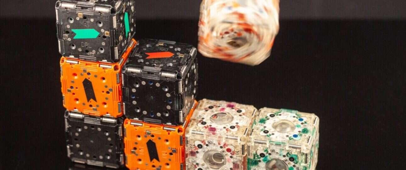 Autonomiczne roboty-kostki z MIT bawią się na nowych materiałach