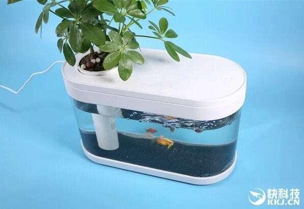 akwarium Xiaomi, Xiaomi Fish Tank, akwarium Xiaomi Fish Tank