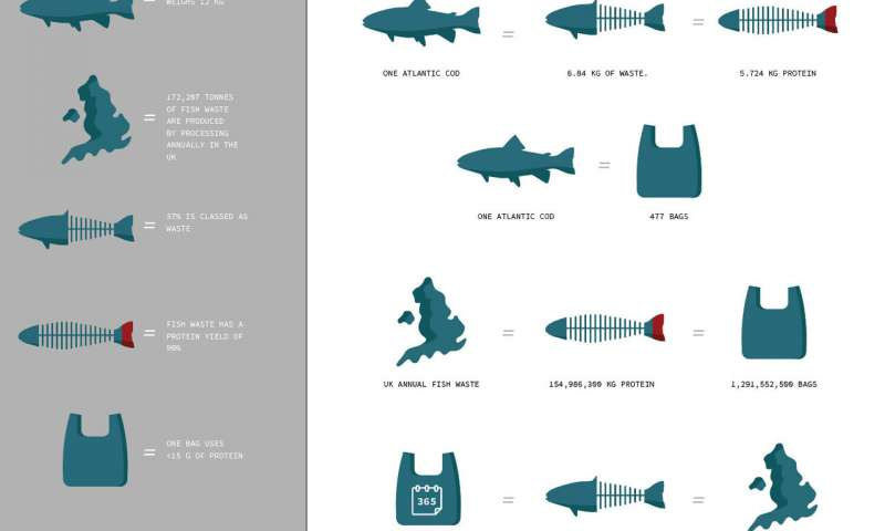 biodegradowalny plastik, plastik z ryb, plastik z rybnych odpadków, naturalny plastik