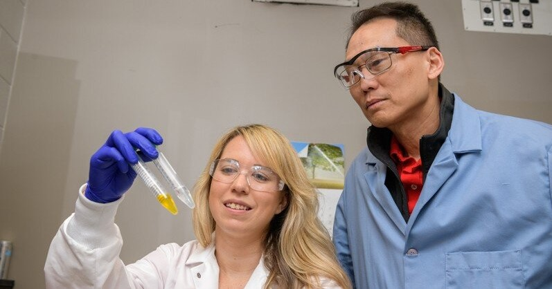 Nowy zwrot akcji w technologii edycji genów CRISPR