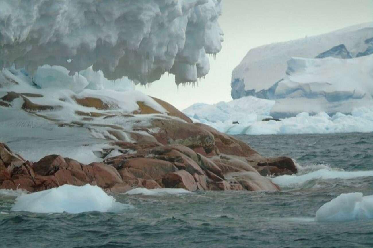 Znaleźli formy życia głęboko pod lodem. Były odizolowane od wielu lat