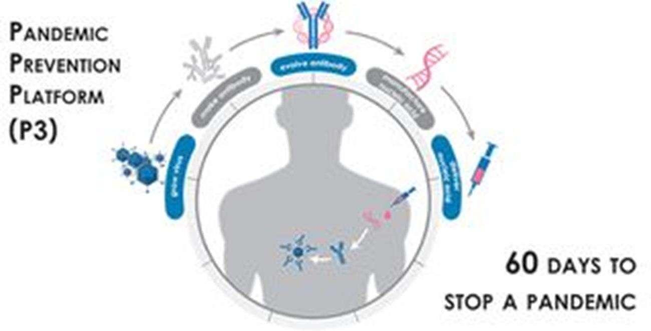 koronawirus, tarcza przed koronawirusem, DARPA, szczepionka