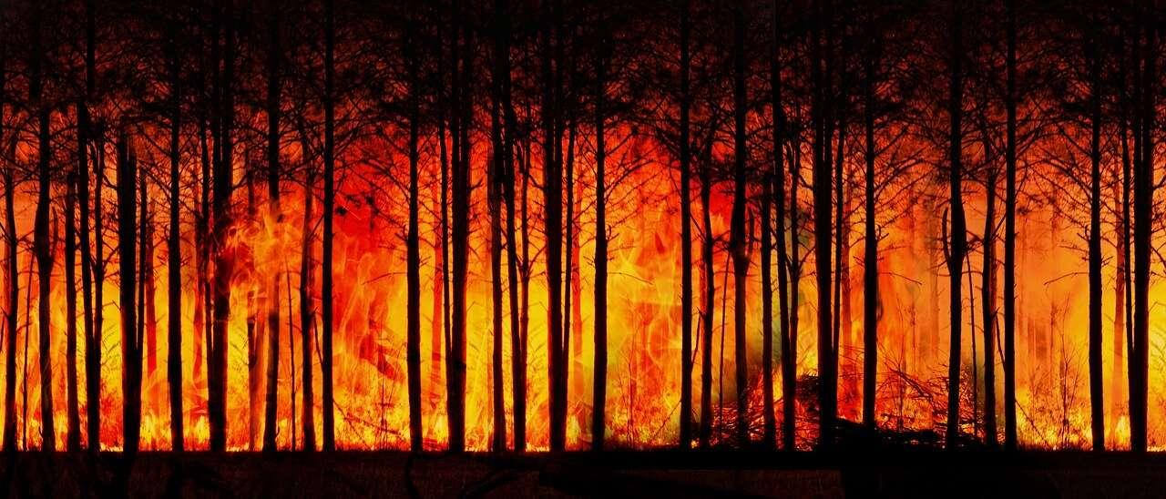 Ziemia ginie szybciej niż przewidywali naukowcy. Oto niektóre z konsekwencji