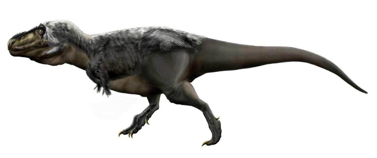Skąd wiemy, ile ważyły dinozaury?