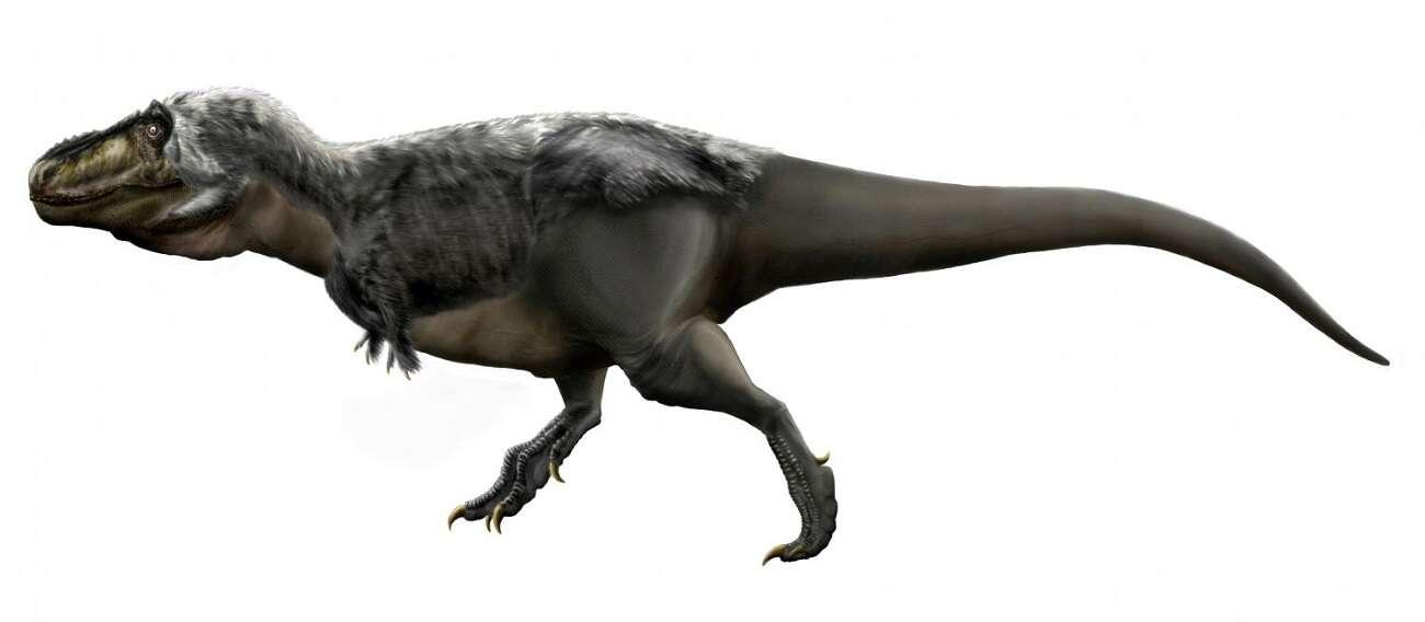 Co mają wspólnego ludzie i tyranozaury?