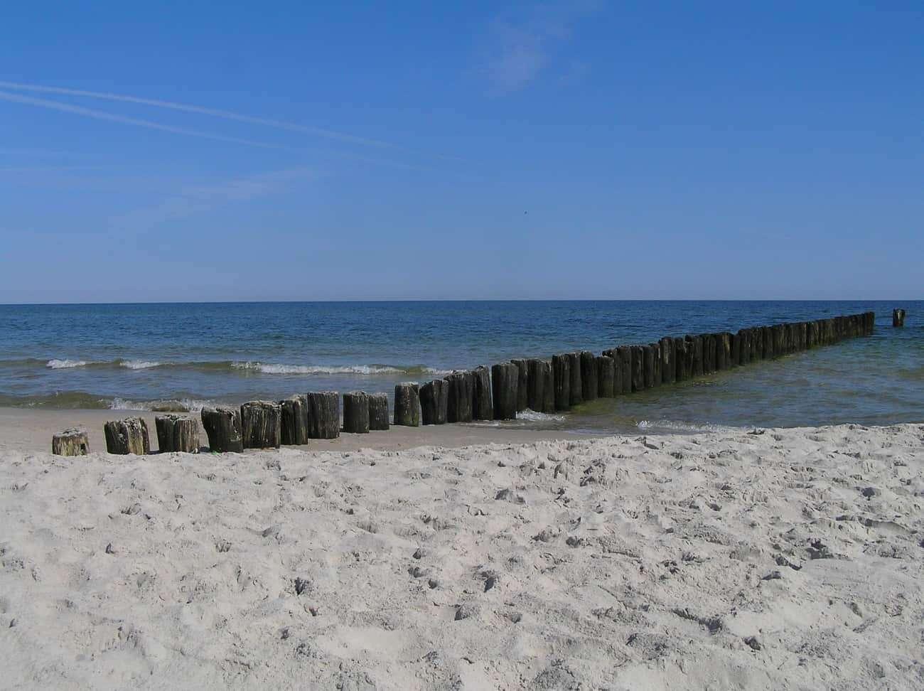 rosnace poziomy morz