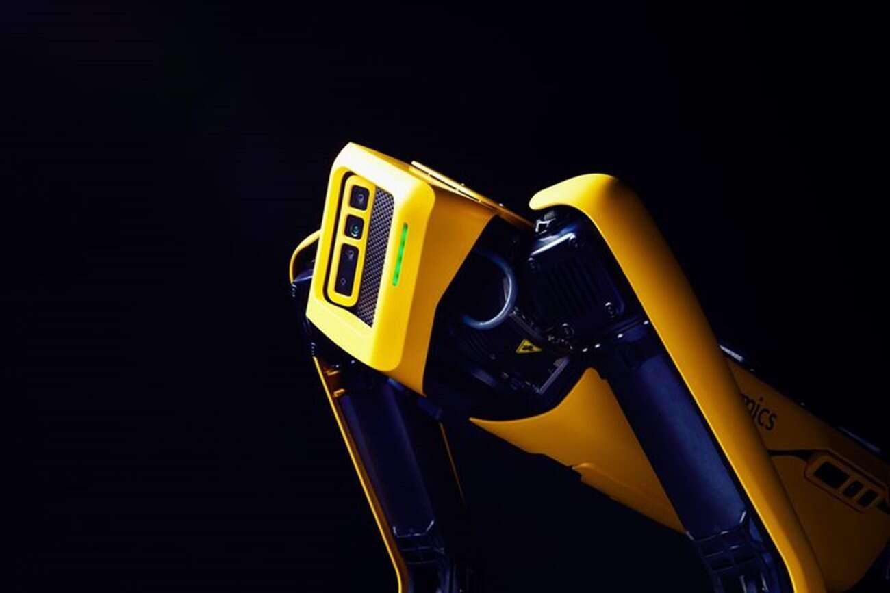 Boston Dynamics Spot, robot Spot, psi robot, Spot kupno, cena robota Spot, cena Spot, jak kupić robopsa, robopies Spot