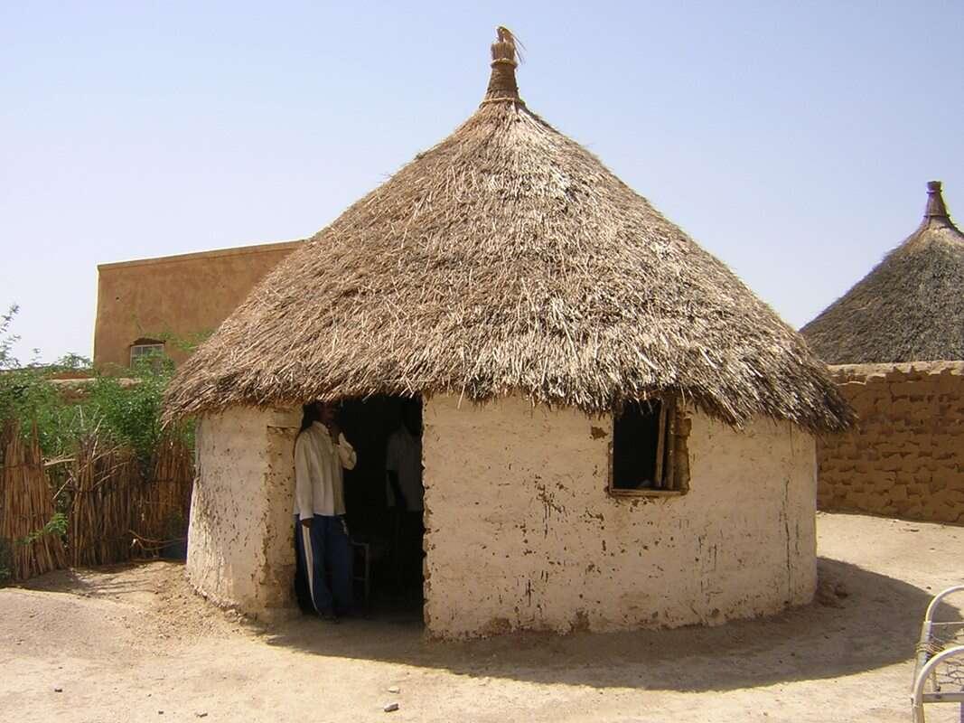Drukowanie budynków z ziemi, czyli tanio i ekologicznie