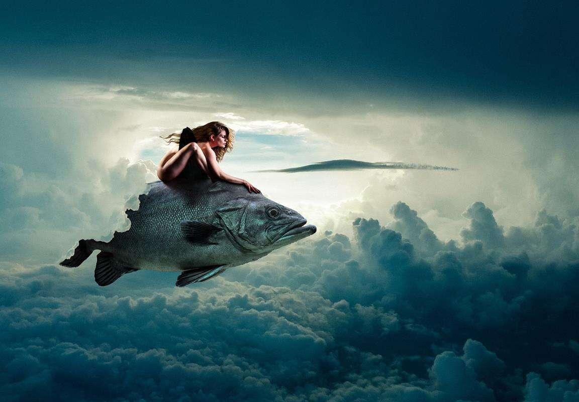 Rybie łuski trafią na samoloty? Ma to więcej sensu, niż myślicie