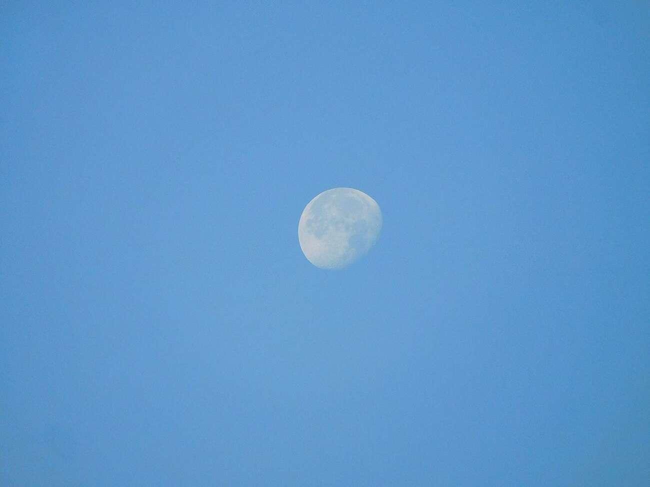 NASA kupi księżycowe skały. I to już za dolara