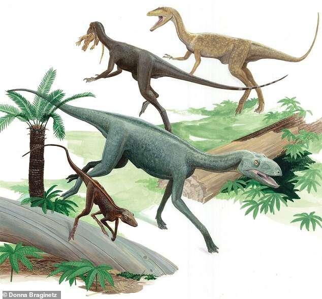Smoki w prawdziwym życiu? Zobaczcie nietypowego gada sprzed milionów lat