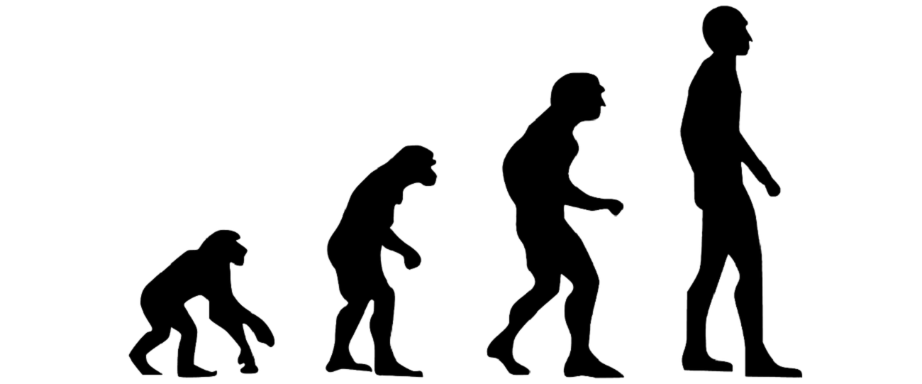 Jak przebiega ewolucja człowieka? Oto 3 udokumentowane kwestie