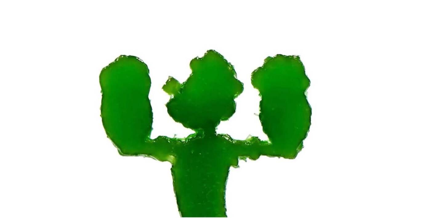 Fotosyntetyczny filament druku 3D, filament druku 3D,