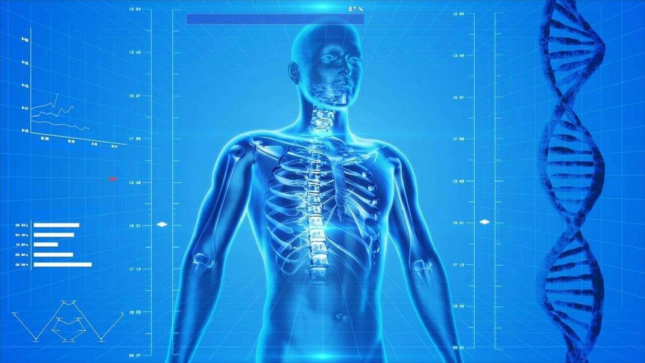 Nie zgadniecie, jak wiele komórek powstaje w naszym ciele każdej sekundy