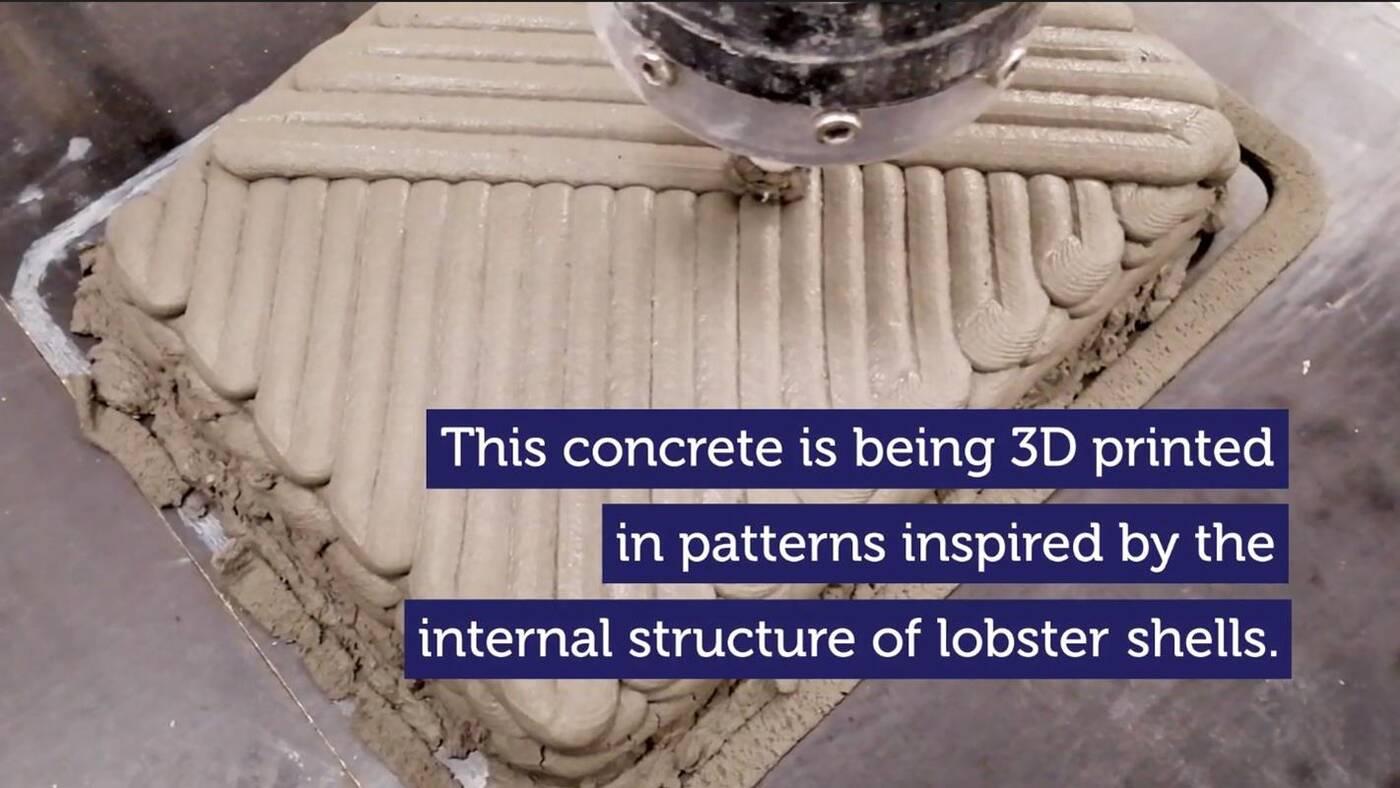 Pancerz homara, wytrzymalszego betonu 3D
