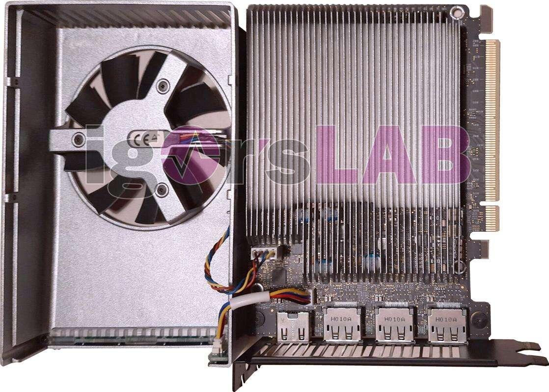 Karta graficzna Intel Xe DG1 SDV zdjęcia, Karta graficzna Intel Xe DG1 SDV, Intel Xe DG1 SDV
