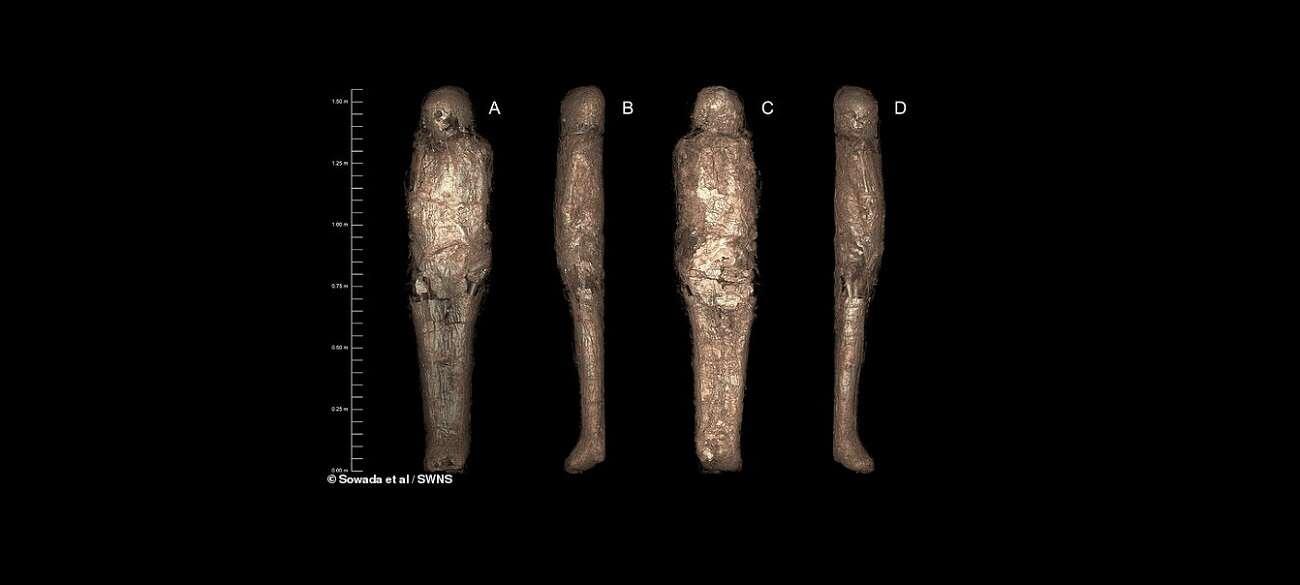 Niesamowita mumia ma fałszywą tożsamość. Kim jest kobieta sprzed 3 tysięcy lat?