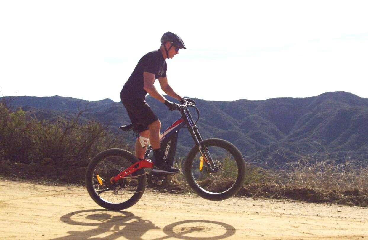 elektryczny rower Patriot Pro, Patriot Pro, ebike Patriot Pro