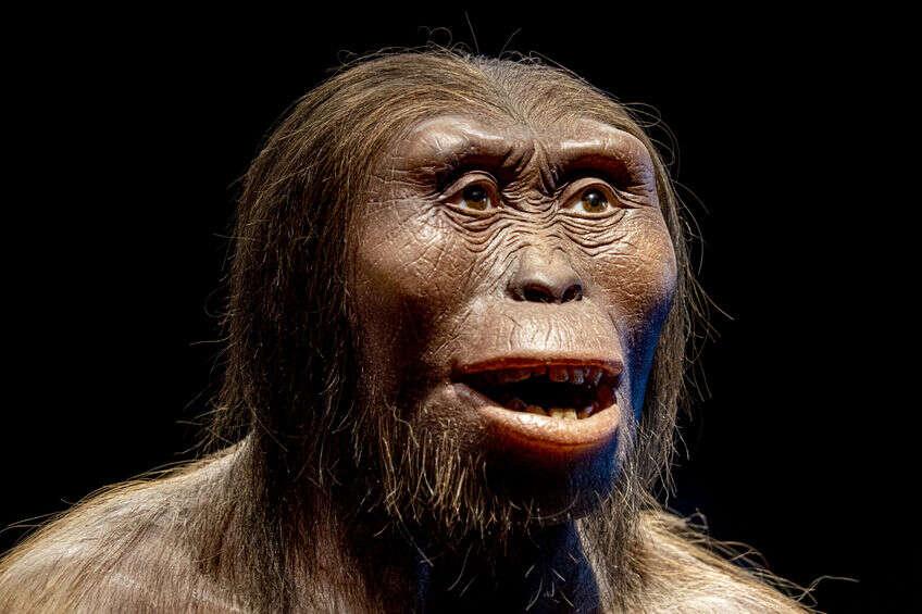 Czy ludzie współcześni krzyżowali się z neandertalczykami?