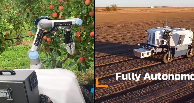 Nowe autonomiczne roboty rolnicze, autonomiczne roboty rolnicze, Apple Harvester 3