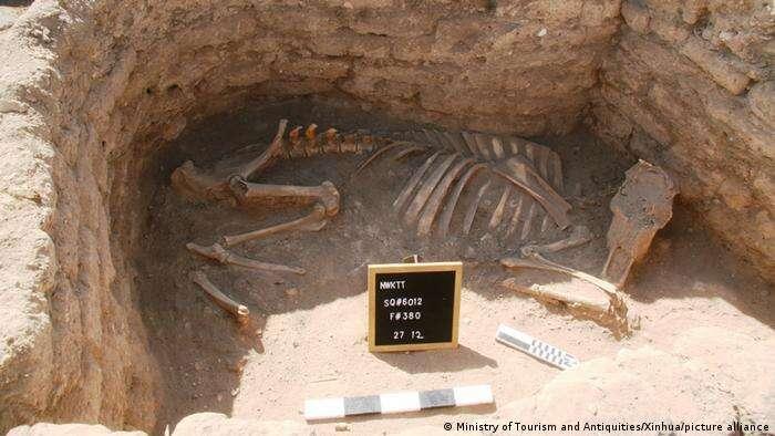 Zaginione Złote Miasto odnalezione w Egipcie. Było ukryte przez ponad 3000 lat