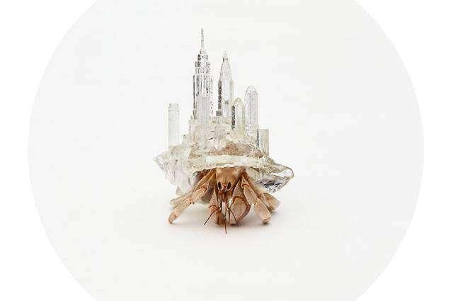 Wydrukowane w 3D ozdobne muszle dla krabów