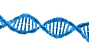 Freedom 4 – rewolucyjne urządzenie do sekwencjonowania DNA
