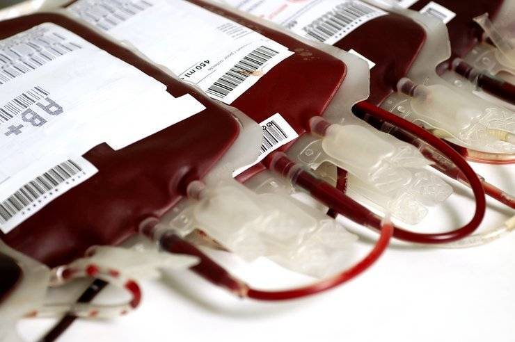 Pacjentom z Alzheimerem będzie wtłaczana krew młodych ludzi