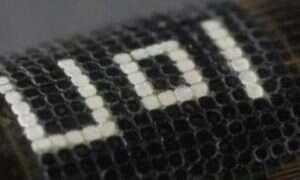 Zmieniający kolor kamuflaż inspirowany skórą ośmiornicy