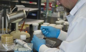 Technologia NASA zostanie użyta do odkażania próbek tkanek