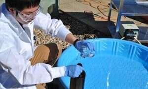 Energia słoneczna zrewolucjonizuje oczyszczanie stawów osadowych