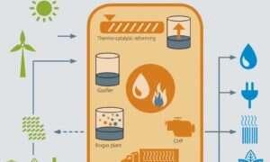"""""""Biobateria"""" pozowli przetworzyć więcej odpadów w elektryczność i olej silnikowy"""