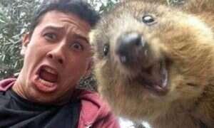 """Wszyscy, którzy robili sobie """"selfie"""" z Kuoką, mogą otrzymać karę pieniężną"""