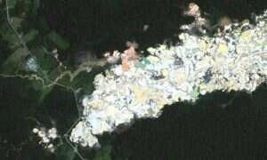 Zdjęcia satelitarne pokazujące jak wydobywanie złota niszczy lasy tropikalne