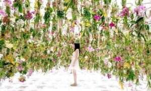 Zwisający z sufitu cudowny ogród prosto z Japonii