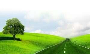 Naukowcy mają pomysł, jak uczynić drogi bardziej zielonymi