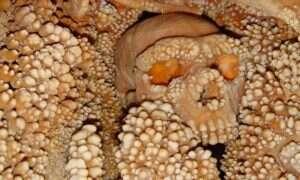 Szkielet, który przez 150 tysięcy lat stał się częścią jaskini