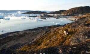 Mikroby – mali klimatyczni sabotażyści na Grenlandii