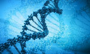 Denaturacja DNA sposobem policji na odróżnienie bliźniaków