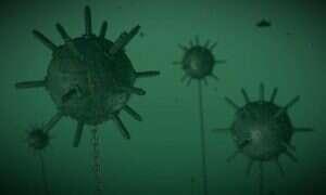 Mechaniczni saperzy wskoczą do wody w poszukiwaniu min