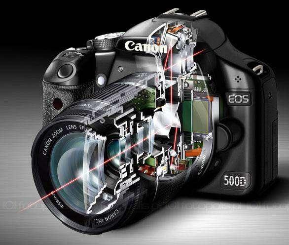 canon-eos-500d-przekroj2
