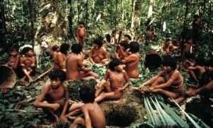 Mieszkańcy amazońskiej puszczy mają niezwykle zróżnicowany mikrobiom
