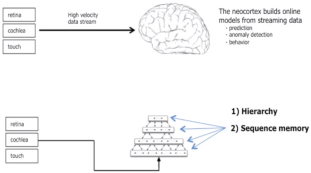 neocortex_sequence_memory